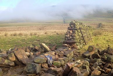 upland dry stone wall being rebuilt near Appleby, Cumbria.