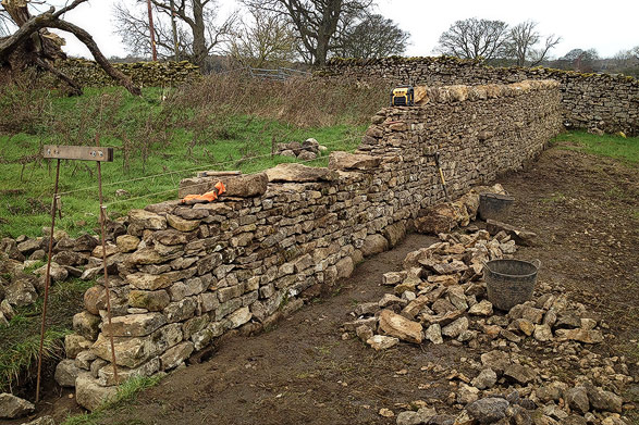 dry stone wall being constructed from traditional limestone walling stone in Eden Valley, Cumbria.