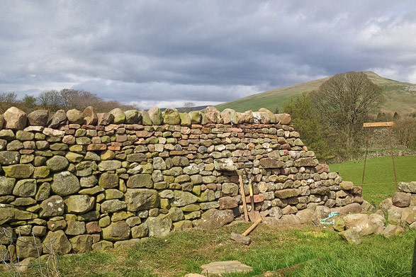 dry stone wall being constructed from beck and field stones near Appleby, Cumbria.